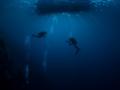 divers-weda-resort-halmahera-indonesia